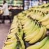 朝と昼をバナナで過ごす。エネルギー問題なし