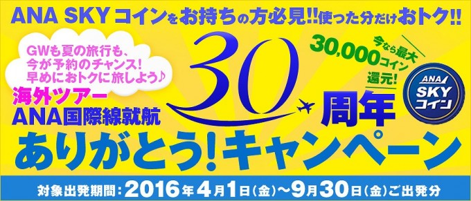SKYコイン30yearsold