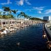 【5,000マイル】シンガポールとハワイのマイル差から考える海外旅行