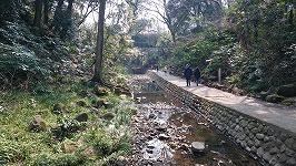 世田谷区で外国人に会える場所「等々力渓谷公園」に行ってきました。