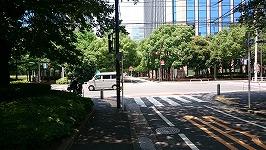 【大森駅】ヒアリ東京上陸って言うから、見に行ってきた帰り道